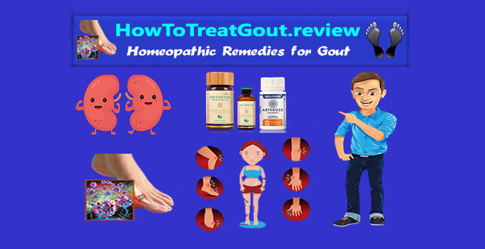 ayurvedic remedies for gout