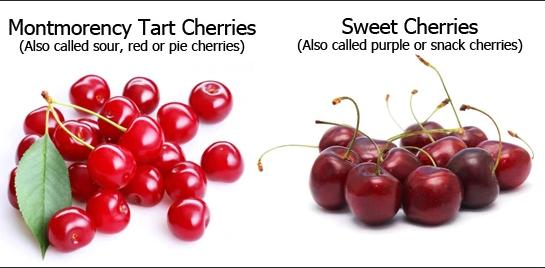 tart cherry vs sweet cherry